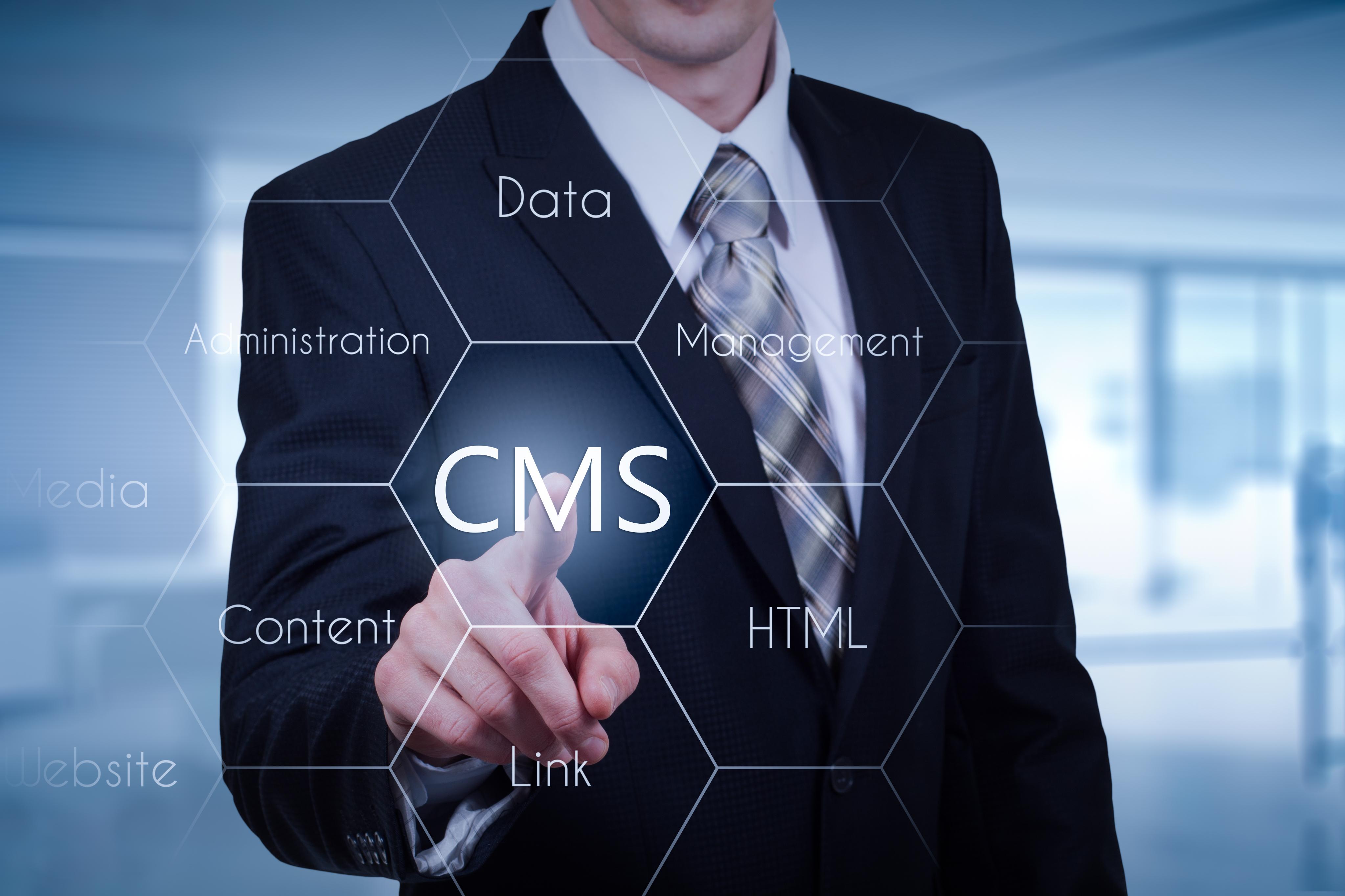 CMSの種類と特徴_3